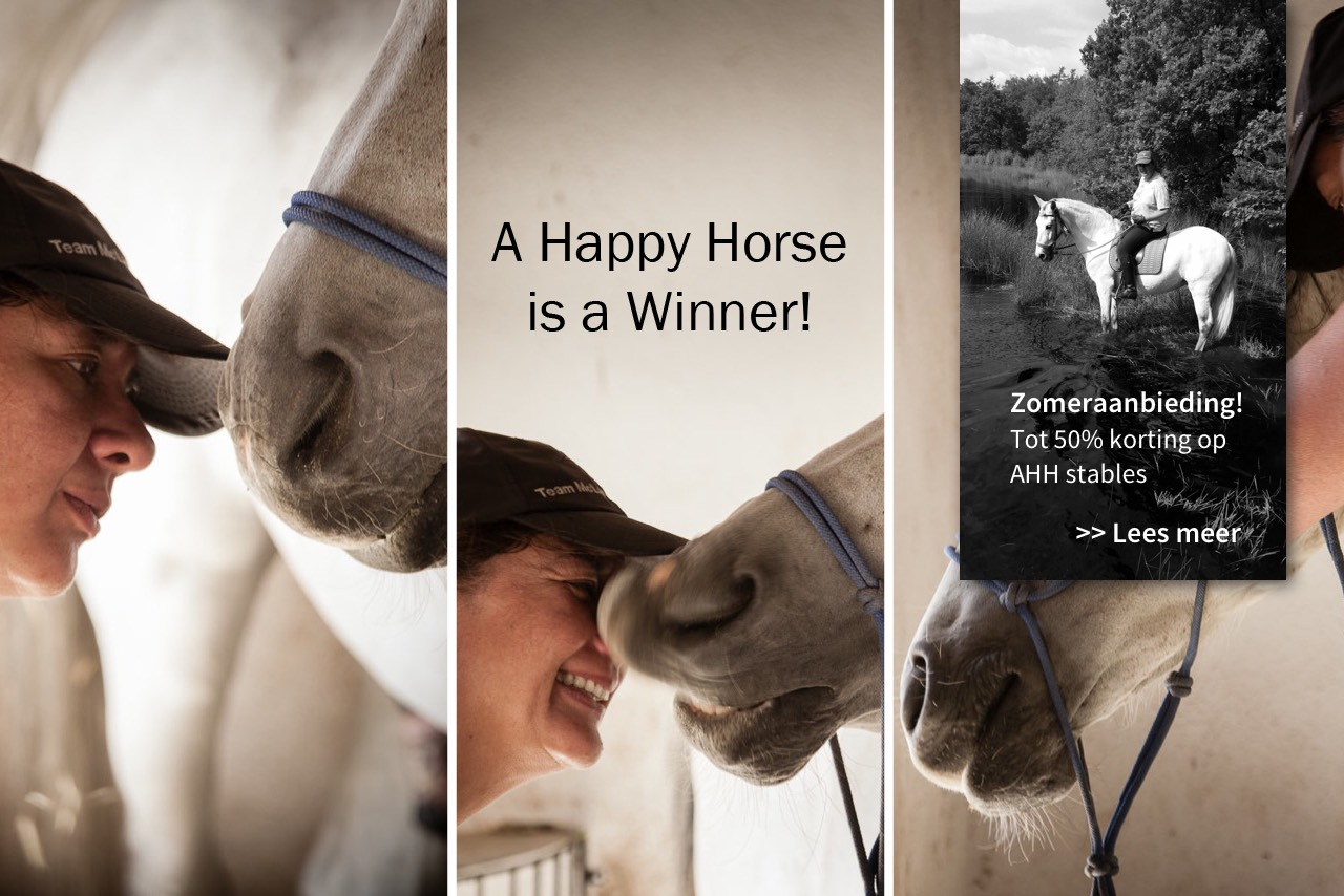 A Happy Horse Stables